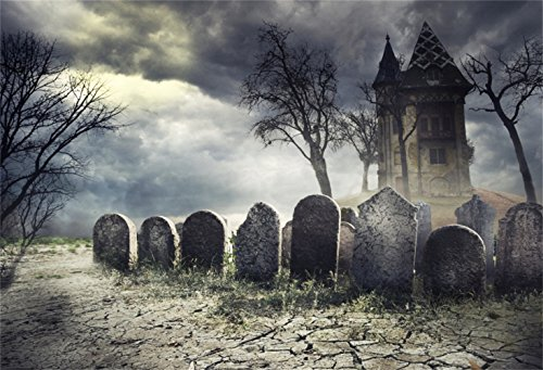Haunted Cemetery Halloween (Laeacco Halloween Theme Backdrop 10x6.5ft Vinyl Photography Background Cloudy Wilderness Ghastly Cemetery Spooky Tombs Foggy Haunted Castle Cracked Earth Trick or Treat Party Kids Baby Shoot)