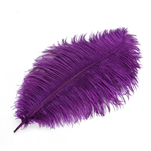 Wionya 10pcs Ostrich Feather Craft 14-16inch(35-40) Plume for Wedding Centerpieces Home Decoration