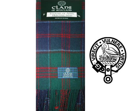 Stewart Of Appin Hunting Modern Plaid Scarf