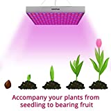 45W LED Grow Light, UNIFUN New Light Plant Bulbs