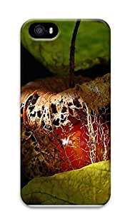 iPhone 5 5S Case Colors Of Nature 3D Custom iPhone 5 5S Case Cover