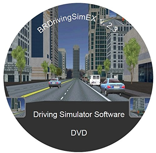 Driving Simulator Software - Driver Training and (Beta Driver)