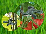 Ram-Pro Green Gentle Gardening Plant & Flower Lever Loop Gripper Clips, Tool for Supporting or Straightening Plant Stems, Stalks, and Vines