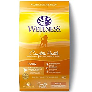Wellness Complete Health Natural Dry Puppy Food, Chicken, Salmon & Oatmeal, 15-Pound Bag 56