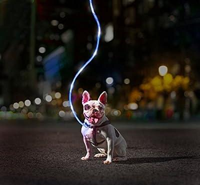 NiteyLeash - LED Glow in the Dark Pet Dog Leash