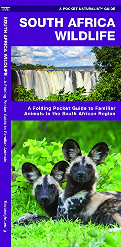South Africa Wildlife: A Folding Pocket Guide to Familiar Animals in the South African Region (Wildlife and Nature Identification) ()