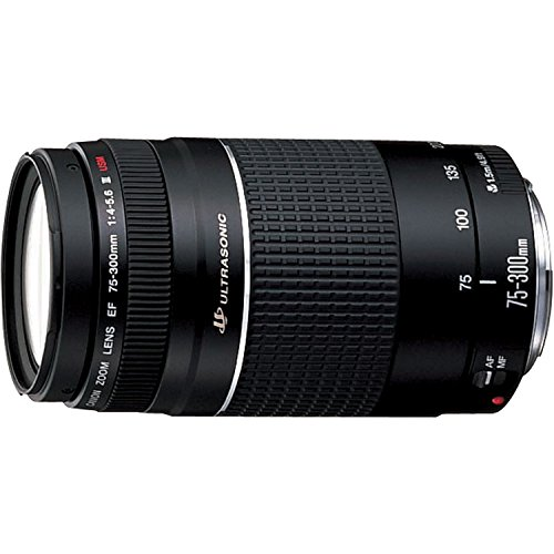 Canon EF 75-300mm f/4-5.6 III Telephoto Zoom Lens for Canon SLR Cameras (Certified Refurbished)