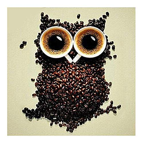 zhui star DIY Round Diamond Painting Kits for Adults Full Drill Cross Stitch Coffee Owl Home Decoration ()