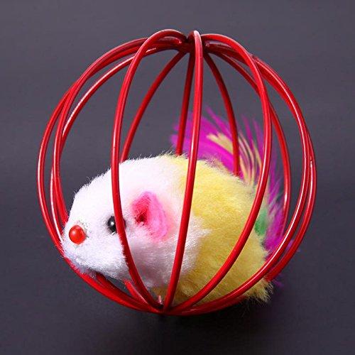 Amazon.com : Best Quality 3pcs/lot Funny pet Kitten cat Playing Mouse Rat mice Ball cage Toys Home Gatos jouet Chat juguetes para Gatos katten speelgoed ...