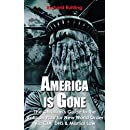 America Is Gone...: The Christian's Guide to the  Vatican Plan for New World Order Via CIA, DHS & Martial Law (White Horse Series)