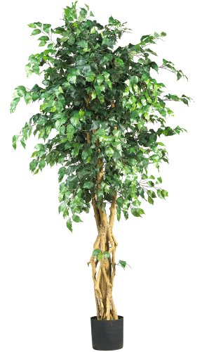 Nearly Natural 5216 Palace Style Ficus Silk Tree, 6-Feet, Green (Tree Silk)