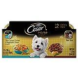 Cesar Home Delights 6 Chicken & Vegetables & 6 Bee...