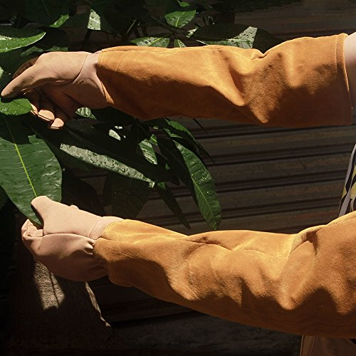 Leather Rose Pruning Gardening Gloves Puncture Resistant Work Gloves Rose Gloves Best for Gardener Orchardist Farmer Owner Men Women HCT05-US (M, Khaki) by Hense (Image #3)