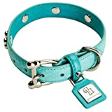 Chrome Bones Forever Bones Python Pet Collar, X-Small, Turquoise