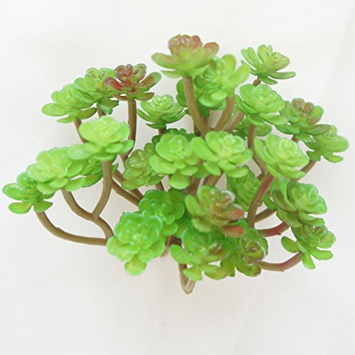 Lily Garden All Kinds of Green Artificial Succulent Plants (G)