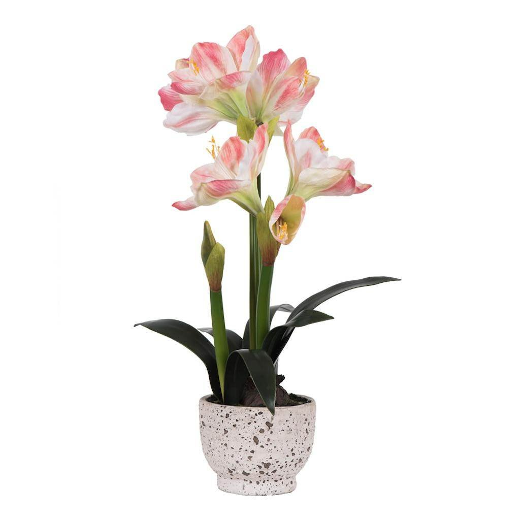 Vickerman FN181201 Pink Amaryllis Everyday Floral