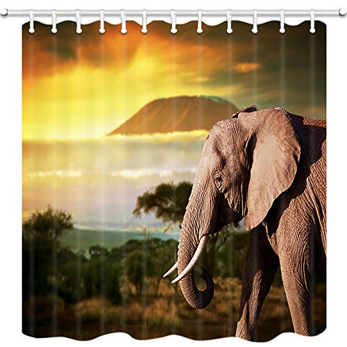 - JAWO Safari Decor Shower Curtain, African Elephant on The Prairie, Mildew Resistant Polyester Fabric Bathroom Decor, Bath Curtain with Hook, Bathroom Accessories, 69x70 Inch