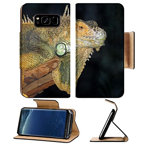 Iguana Grain - Liili Premium Samsung Galaxy S8 Plus Flip Pu Leather Wallet Case A macro shot of a beautiful iguana Photo 530241 Simple Snap Carrying