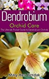 Dendrobium Orchid Care: The Ultimate Pocket Guide