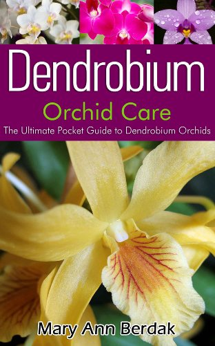 Dendrobium Orchid Care: The Ultimate Pocket Guide to Dendrobium Orchids
