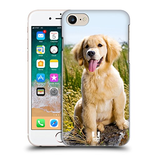 Head Case Designs Golden Retriever Puppy Popular Dog Breeds Hard Back Case Compatible for iPhone 7 / iPhone 8