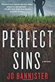 img - for Perfect Sins: A Mystery book / textbook / text book
