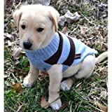 Rugby Dog Sweater Size: Small (12″), Color: Light Blue / Brown, My Pet Supplies