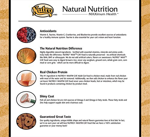 Nutro Max Cat Adult Roasted Chicken Flavor Dry Cat Food (1)16 Pounds; Rich In Nutrients And Full Of Flavor; Supports Healthy Joints & Healthy Skin And Coat 5