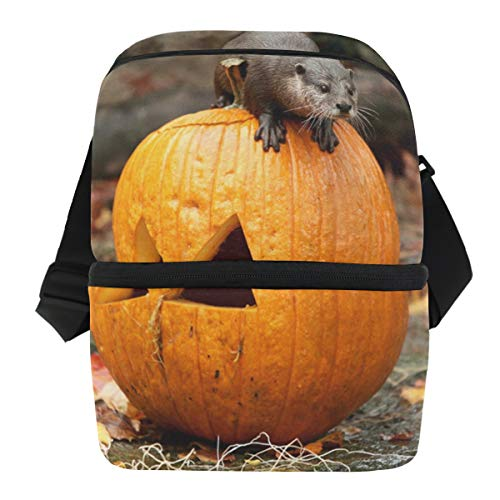 Lovexue Lunch Bag Animals Playing Halloween Pumpkin Portable Cooler Bag Adult Leakproof Refrigerator Organizer Zipper Tote Bags for Grocery ()