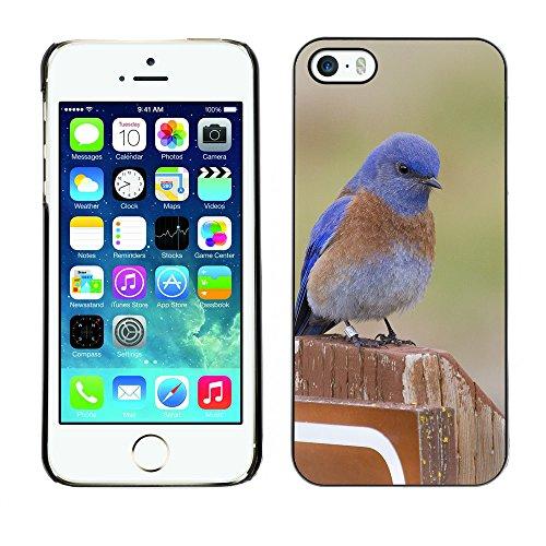 Premio Sottile Slim Cassa Custodia Case Cover Shell // F00022292 Montagne bluebird // Apple iPhone 5 5S 5G