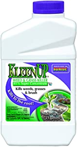 Bonide (BND7461) - KleenUp Weed Killer Concentrate, Weed and Grass Control 41% Super Concentrate (1 qt.)