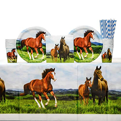 Horse and Pony Party Supplies Pack for 16 Guests Including Paper Cups, Paper Dinner Plates, Paper Lunch Napkins, Paper Straws, and Plastic Table Cover (Bundle for 16)