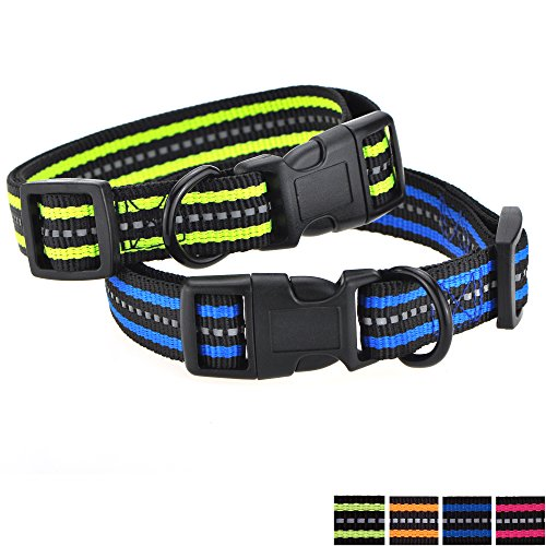 Mile High Life Night Reflective Double Bands Nylon Dog Collar (2 Pack Blue/Lime Green, Mediun Neck 14-19 -40 lb)