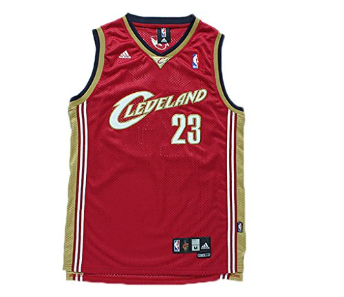 wholesale dealer 7ebeb 11b85 Pnony Men's Cleveland Cavaliers #23 LeBron James Classic ...