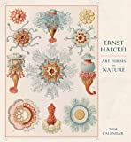 Ernst Haeckel: Art Forms in Nature 2018 Wall Calendar