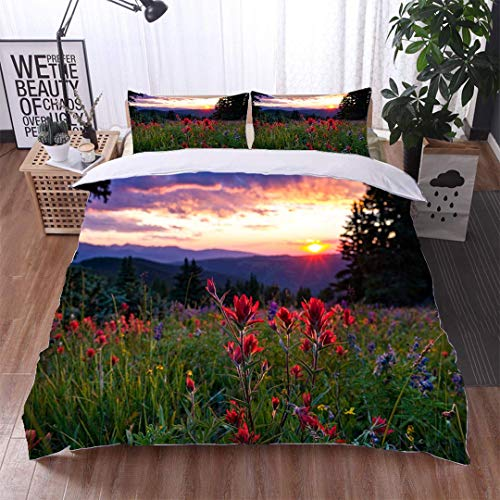 VROSELV-HOME 3 PCS King Size Comforter Set,Wildflowers in Mountain Meadow at Sunset,Soft,Breathable,Hypoallergenic,with 1 Pillowcase for Kids Bedding