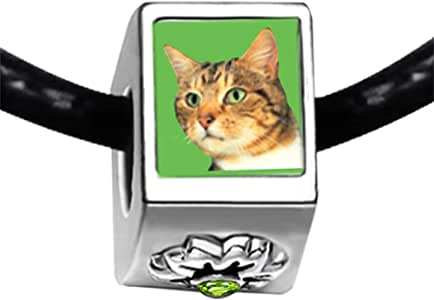Chicforest Silver Plated Green Eyed Cat Photo Peridot Crystal August Birthstone Flower Charm Beads Fits Pandora Charm Bracelet