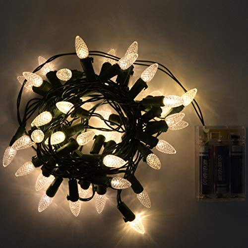 C3 Led Christmas Lights in US - 8