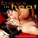Boys in Heat: Gay Erotic Stories | Richard Labonte (editor)
