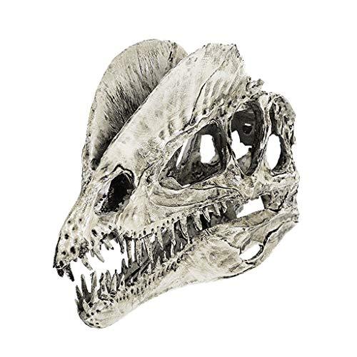 LOVIVER Human Skull Replica Halloween Dinosaur Skull Skeleton Head Realistic Resin Skull Ornaments Mantel Decorations Skeleton