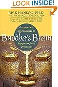 #3: Buddha's Brain: The Practical Neuroscience of Happiness, Love, and Wisdom