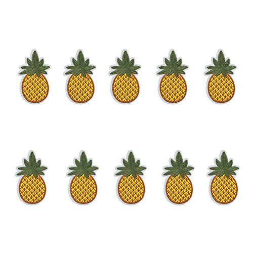 le Cactus Embroidered Repair Patches Iron On Sew-on Cloth Paste DIY Applique Craft Kids Clothing Hat Bag Decor (Pineapple) ()