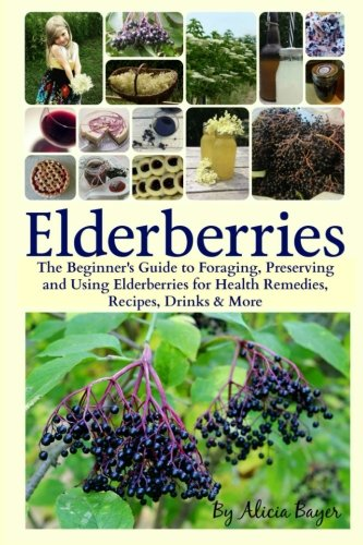 Elderberries:  The Beginner's Guide to Foraging, Preserving and Using Elderberries for Health Remedies, Recipes, Drinks & More