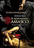 img - for RESPLANDOR DAMASCO NOVE-HIST ESFERA book / textbook / text book