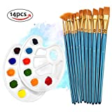 Paint Brushes,TOPELEK 12 Pcs Paint Brush Set With 2 Additional Paint Tray Palettes for Acrylic,watercolor,Craft & oil painting.Great for Beginners, Kids, Artists and Painting Lovers