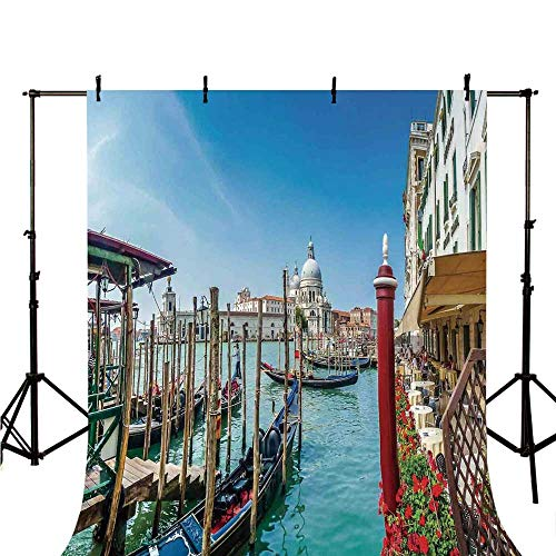 lish Backdrop,Gondola on Canal Grande Basilica di Santa Maria Della Salute Sunny Day in Venice for Photography,70.8