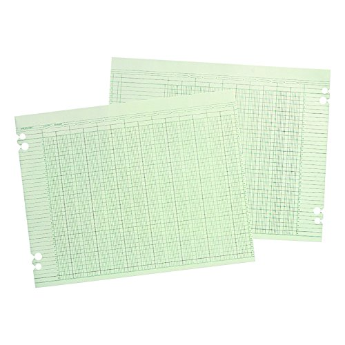 Wilson Jones G1010 Accounting Sheets, 10 Column, 9-1/4 x 11-7/8, Green (Pack of 100 Loose Sheets) ()