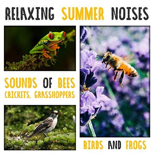 Buzzing Bees vol. 1]()