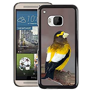 A-type Arte & diseño plástico duro Fundas Cover Cubre Hard Case Cover para HTC One M9 (Yellow Songbird Beautiful Nature Feathers)