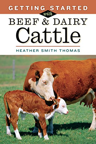 Getting Started with Beef & Dairy Cattle